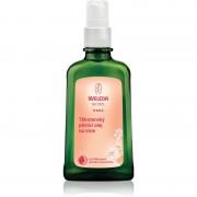 Weleda Pregnancy and Lactation těhotenský pěsticí olej na strie 100 ml