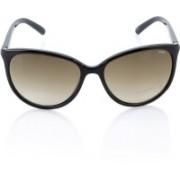 IDEE Oval Sunglasses(Brown)