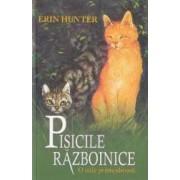 Pisicile razboinice. Vol. 5 O cale primejdioasa - Erin Hunter