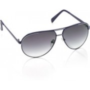 Rockford Aviator Sunglasses(Blue)
