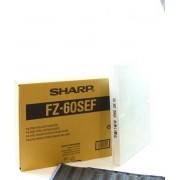 Sharp HEPA/ koolstof filter set FZ-60SEF voor Sharp luchtreinigers FU-55SES/ FU-60SES luchtreiniger.