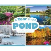 A Year in the Pond, Hardcover/Christina MIA Gardeski