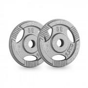 IP3H 2.5 Par de Placas de Peso 30 milímetros 2,5 kg Cinzento