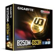 Placa de Baza Gigabyte GA-B250M-DS3H