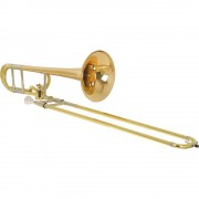 Stagg Trombone 77-TDHGGL
