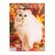 Calendar Pisici 2019 - format mare, de perete, spiralat, 12+1 file