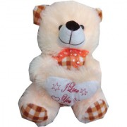 Suraj baby soft toy just for you and i love u heart teddy with checks 25cm