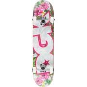 DGK Komplett Skateboard DGK (Tropic Link)