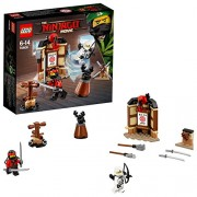 Lego Spinjitzu Training Building Sets