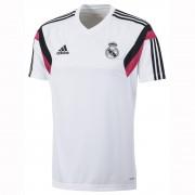 Real Madrid edzőmez