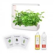 Klarstein GrowIt Cuisine Starter Kit Asia, 10 plante, 25 W LED, semințe din Asia, soluție nutritivă (Klarstein_Start_C1)