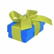 Merkloos Blauw cadeaudoosje 8 cm met lichtgroene strik
