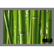 Ag Design Bamboe Fotobehang 4D (AG Design)