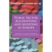 Public Sector Accounting and Auditing in Europe: The Challenge of Harmonization