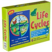 Tingoking Learning and Educational Chicken Life Cycles Animals Grow & Change