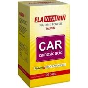 Flavitamin Carnosic A kapszula 100db
