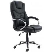 Scaune ergonomice 623
