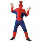 Geen Spinnenhelden kostuum