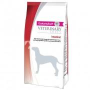 Eukanuba Intestinal Dog 5 kg