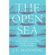 Economy of the Ancient Mediterranean World (Manning Joseph)(Cartonat) (9780691151748)