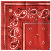 Beistle Cowboy Bandana Beverage Napkins : package of 16 by