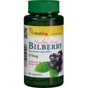 Afin Negru (Bilberry) 470 mg, 90 capsule