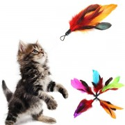 Meco 5pcs Pet Cat Feather Teaser Refills For Da Bird Wand Teaser
