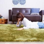 抗菌防臭ウォッシャブルさらふわシャギーラグ カーペット・絨毯 洗える ベルーナ