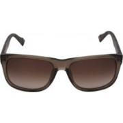 Boss Orange Wayfarer Sunglasses(Brown)