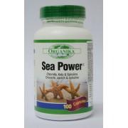 Sea Power (Complex din alge) - pentru detoxifierea organismului, suportul digestiv si imunitar necesar