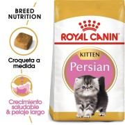 Royal Canin KITTEN PERSIAN 2 Kg.