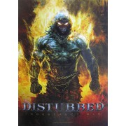 "Steag Disturbed ""Indestructible"" HFL 1022"