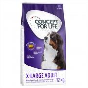 6kg Concept for Life X-Large Adult száraz kutyatáp