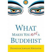 What Makes You Not A Buddhist by Dzongsar Jamyang Khyentse