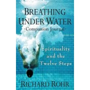 Breathing Under Water Companion Journal: Spirituality and the Twelve Steps, Paperback/Richard Rohr