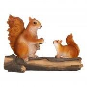 Geen Beeldje eekhoorns op boomstam 24 x 10 x 18 cm - Action products