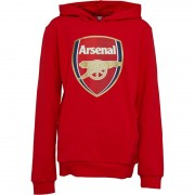 Puma Junior AFC Arsenal Royal Crest Hoodie High Risk Red