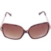 Miami Blues Round Sunglasses(Brown)