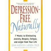 Depression-Free, Naturally: 7 Weeks to Eliminating Anxiety, Despair, Fatigue, and Anger from Your Life, Paperback