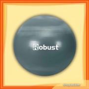 Gymball 55 cm (buc)