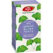 Ginkgo biloba forte-n142 63cps FARES