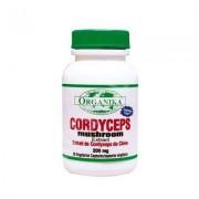 Cordyceps 200mg 90 cps Organika