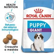 15kg Giant Puppy Royal Canin pienso para perros