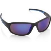 Joe Black Round Sunglasses(Blue)