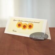Plic de bani Floarea soarelui