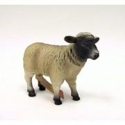 Black Faced Sheep (Ewe) by Mojo