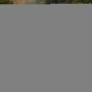 vidaXL Outdoor Lounge Set Nine Pieces Brown Poly Rattan