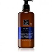 Apivita Men's Care HippophaeTC & Rosemary Șampon împotriva căderii părului 500 ml