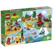 LEGO 10907 - Tiere der Welt