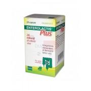 Enterolactis Plus - 20 Capsule Integratore Di Fermenti Lattici Vivi